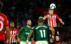SOUTHAMPTON, ENGLAND - SEPTEMBER 17: Steven Davis (right) of Southampton FC during the Premier League match between Southampton FC and Brighton & Hove Albion at St Mary's Stadium on September 17, 2018 in Southampton, United Kingdom. (Photo by James Bridle - Southampton FC/Southampton FC via Getty Images)
