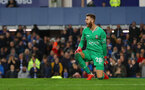 LIVERPOOL, ENGLAND - OCTOBER 02: Angus Gunn of Southampton celebrates during the Carabao Cup Third Round match between Everton and Southampton at Goodison Park on October 2nd, 2018 in Liverpool, England. (Photo by Matt Watson/Southampton FC via Getty Images)