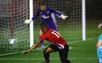 SOUTHAMPTON, ENGLAND - NOVEMBER 09: Tyreke Johnson hits the side of the net during the Premier League 2 match between Southampton FC and Newcastle United pictured at Staplewood Complex on November 09, 2018 in Southampton, England. (Photo by James Bridle - Southampton FC/Southampton FC via Getty Images)