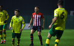 NORWICH, ENGLAND - NOVEMBER 23: Harry Hamblin (middle) during the U23s PL2 match between Norwich City and Southampton FC pictured at Colney Training Ground on November 23, 2018 in Norwich, England. (Photo by James Bridle - Southampton FC/Southampton FC via Getty Images)