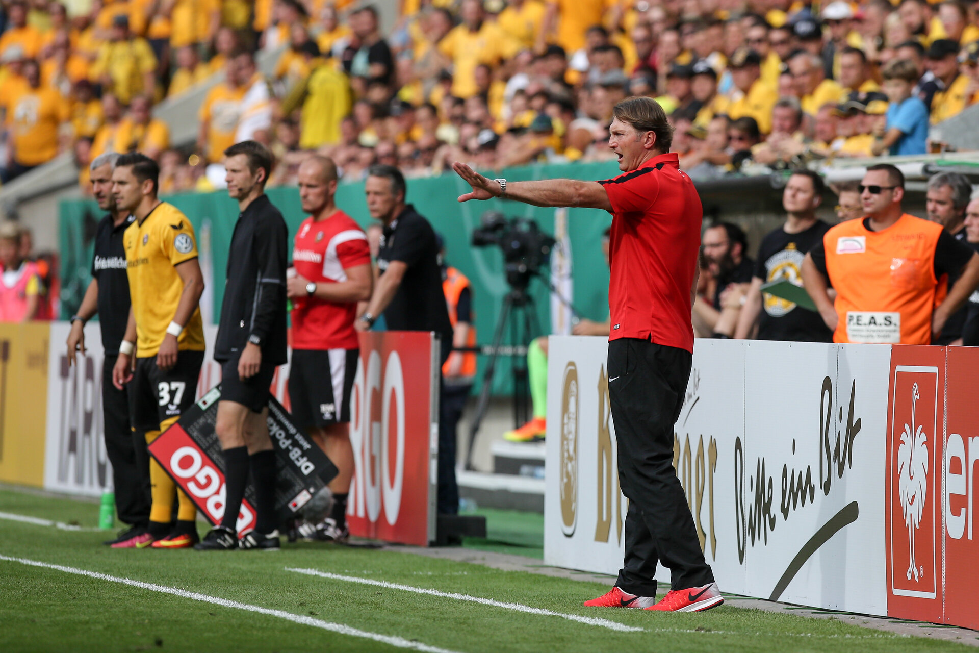 DRESDEN, GERMANY - AUGUST 20:  Head coach of Leipzig Ralph Hasenhuttl gestures during the DFB Cup match between Dynamo Dresden and RB Leipzig at DDV-Stadion on August 20, 2016 in Dresden, Germany.  (Photo by Matej Divizna/Bongarts/Getty Images)